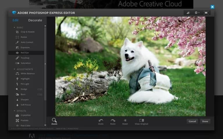 Photoshop Express - Seiren Digital
